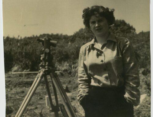 Irish Women at Work